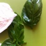Salade de homard rôti, vieilles tomates et mozzarella - Feuilles de basilic lustrées à l'huile d'olive.