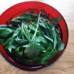 Pesto à l'ail des ours - Dans un saladier, bien laver les feuilles.