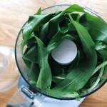Pesto à l'ail des ours - Dans la cuve d'un mixeur, mettre les feuilles d'ail des ours, l'huile d'olive et le sel.