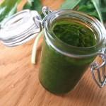 Pesto à l'ail des ours - Débarrasser le pesto dans un bocal et couvrir d'huile d'olive afin de prévenir l'oxydation et le noircissement de la surface.